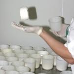 fabrication de fromage de chèvre fermier romilly