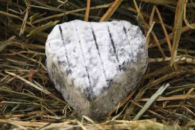 Fromage de chèvre fermier le coeur du perche EARL PETIT PERCHE ROMILLY