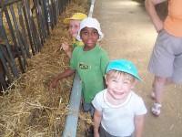 visiter la ferme, visite de la chèvrerie petit perche romilly du perche